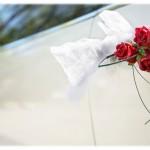 wedding_pat_6